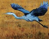 Great Blue Heron Original Painting