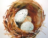 Bird Nest, eggs small watercolour painting, 8 x 10""