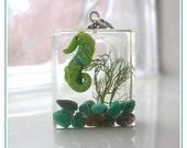 Seahorse Aquarium Cubie