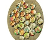 10 QTY // 1 Inch (25mm) Pin Back OR Flat Back Buttons Made With Vintage Children's Book Illustrations from the 20s to the 80s