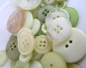 Buttons in Elderflower green light pear x 50g 2oz