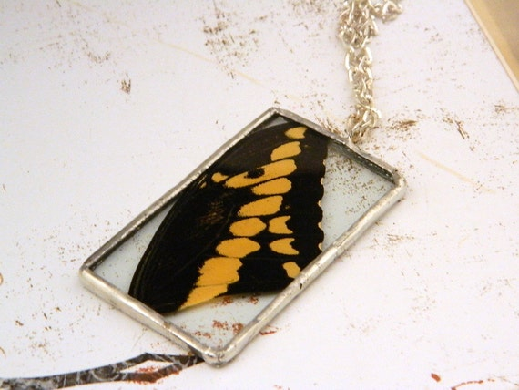 Real Butterfly Wing Soldered Pendant/Necklace--Sakura