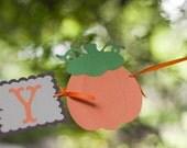 Little Pumpkin Fall Birthday Banner - Pumpkin 1st Birthday Party - Fall Baby Shower Decorations - Thanksgiving Birthday Party Pumpkin Decor