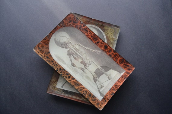 Child Skeleton Rearview Decoupage Tray - book antique endpapers rust black victorian medical glass
