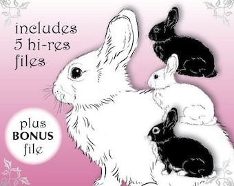 Digital Download: Bunny Rabbit Drawing Clipart, Easter Clipart, DigiStamp, Digital Stamp