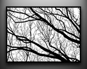 Branches 2: 18x24 Hand-Cut Paper Art, framed and one-of-a-kind