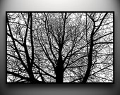 Branches Papercut, original hand-cut 30x20 paper art