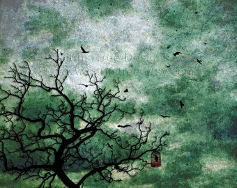 Bird Print Stormy Sky Art Print CAGED - Original Photomontage Fine Art Print - Signed and Dated