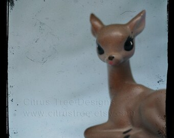 Fawn Deer Woodland Creature Art Prinnt DOE-EYED - TtV Original Fine Art Photography Print - Signed and Dated