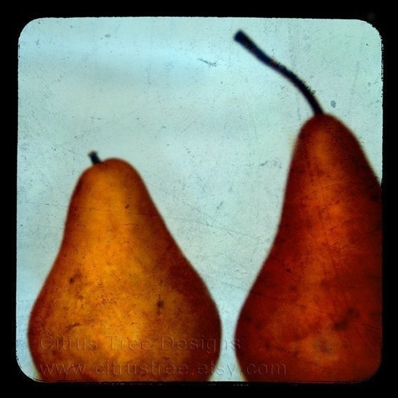 PERFECT PAIR - TtV Original Fine Art Photography Print - Signed and Dated --BUY 2 GET 1 FREE-- Mother's Day Gift