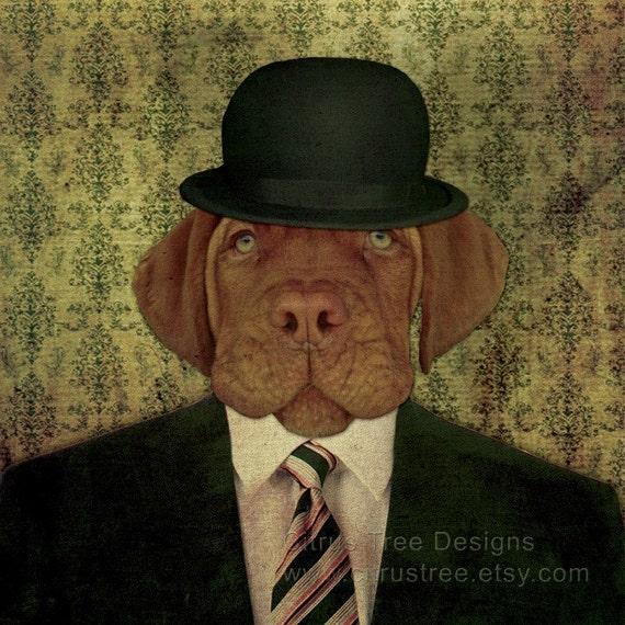 JASPER - Original Photomontage Fine Art Print - Signed and Dated --Dog portrait dog in a hat dog print giclee