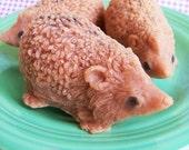 Hedgehog Soap - Animal Soap, Woodland Soap, Hedge Hog, Cute Soap, Soap Gift, Party Favors, Cinnamon Soap, Forest Soap, Soap Favors, Gift