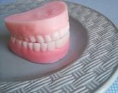 Peppermint Denture Soap Set