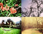 spring beginnings postcard set (8)
