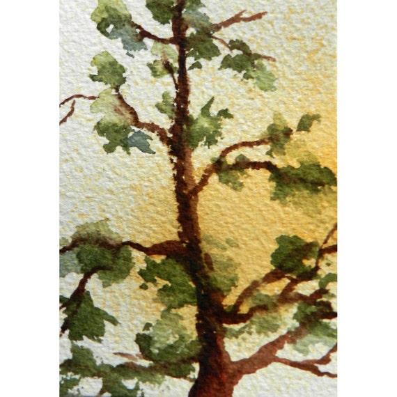 "ACEO tree art,  original watercolor painting, 3 1/2"" x 2 1/2"", pine tree, miniature, dollhouse art, winter sky"