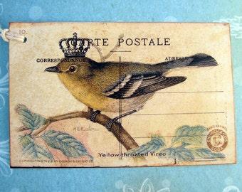 Crown Bird Postcard Gift Tag