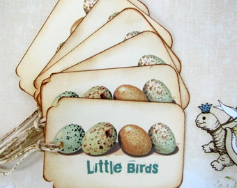Robin Eggs Nature Gift Tags