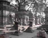 Pashupatinath - 5 x 7 Original Photograph
