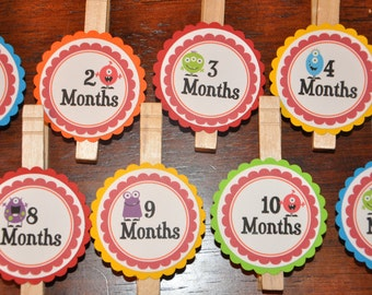 Photo Clips. Monster.  Photo Banner. DIY Photo Banner. First Birthday. Rainbow Colors. Bright. Set of 13