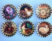 Fantasy Bottlecap Magnet Set