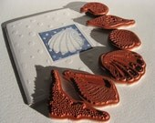 Seashell Collection Rubber Stamps - Cling Mounted