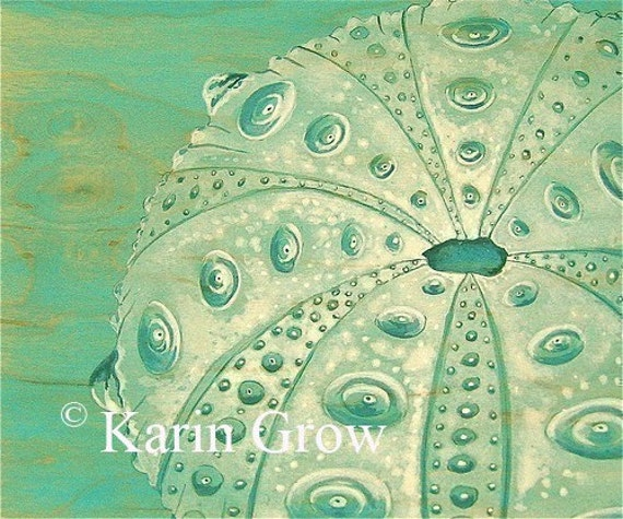 Turquoise Sea Urchin