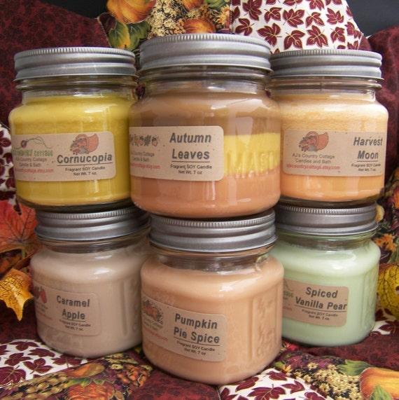 9 SOY CANDLES - You CHOOSE - Vanilla, Cinnamon, Apple, Pumpkin, Fresh, Clean, Citrus, Floral, Fruit, Spice, Herbal