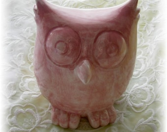 Owl Bank  in Pink