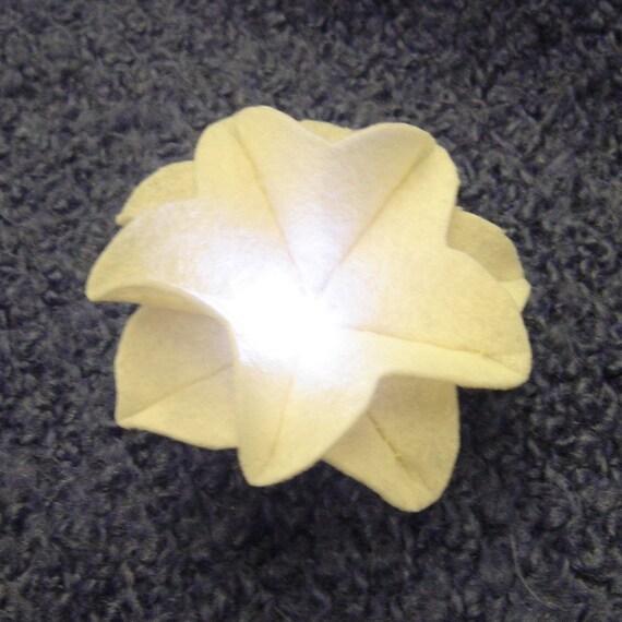 Moonlit Flower DIY Kit