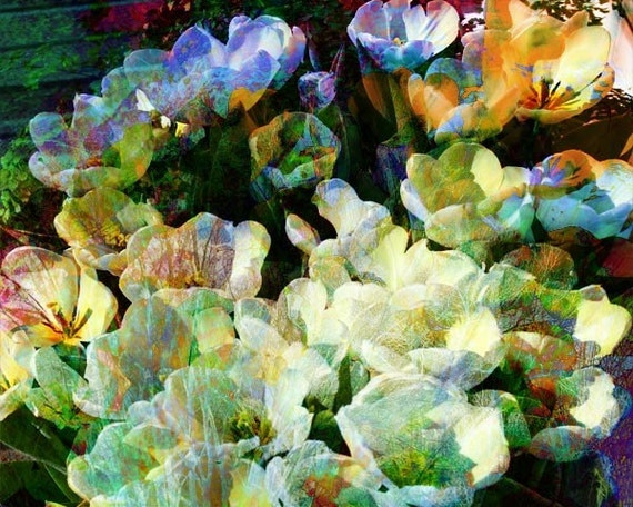 Floral Fine Art Photography, Giclee Fine Art print, Home Decor Art Print,  Pastel Colors
