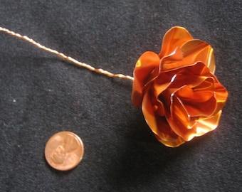 Copper Rose--Plain