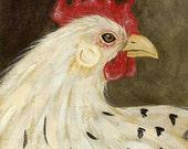 Pretty Chicken blank greeting card
