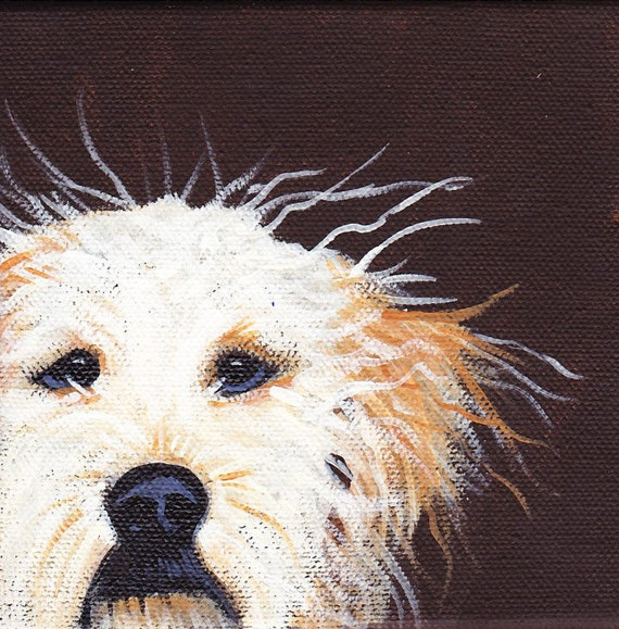 Scruffy dog blank greeting card