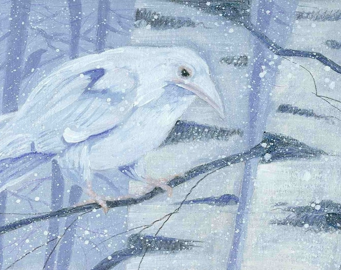 White Raven and Birch Trees  best selling greeting card