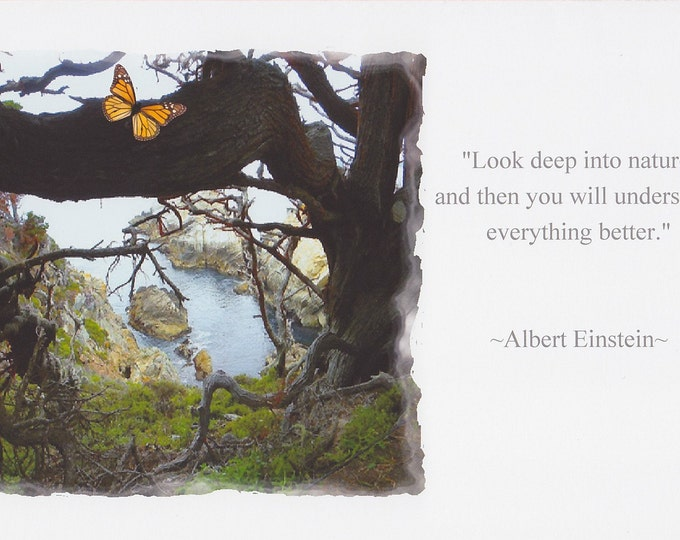Einstein nature quote large card