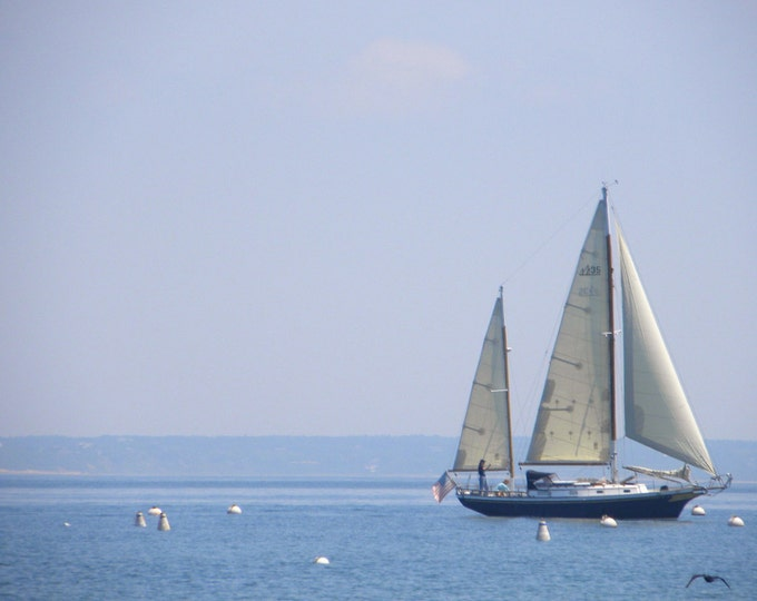 Sailing in Provincetown greeting card