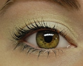 Pale Yellow Eyeshadow - BUTTERCREAM (114) Mineral Eye Shadow - Large 10 gram Jar