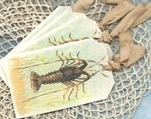Lobster Crawfish Gift Tags Quality Heavyweight Apothecary Hang Labels, Eco Friendly