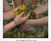 An Herbal Summer: Exploring the World of Herbs with you Children