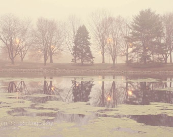 morning reflection - limited edition photograph