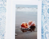 Stone Harbor Shells. DELUXE Fine Art Photography Greeting Card.