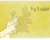 hand shadow - rabbit