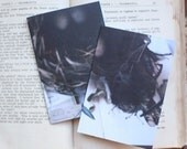 Set of two Polaroid Journals