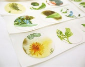 18 Round Stickers - flowers - Vintage Gnome Book - One of a Kind OOAK