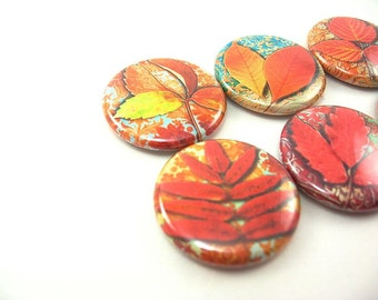 6 fall Autumn leaves fridge magnet, pin or wine charm set / red, orange, yellow, leaf