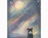 I See the Moon 8x10 print - Border collie dog art