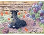 Keen gardener greyhound 8x10 art print