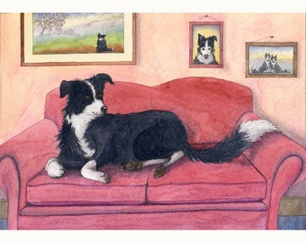 Border Collie dog on sofa 8x10 print - Susan Alison