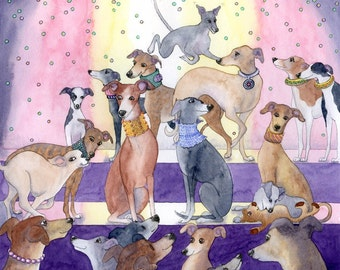 Whippet greyhound dog fashion parade 8x10 print