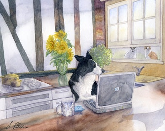 Border Collie dog engineer 8x10 print - working on his laptop